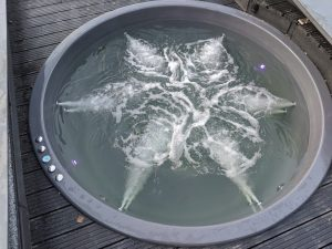 Smart hot tub created by Lithuanians: more comfort for less money